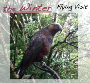 The Winter: Flying Visit (2012)