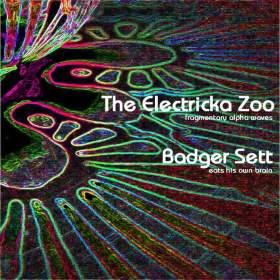 http://heavyspacerecords.blogspot.co.nz/2016/03/23-electricka-zoombadger-sett-split-7.html?m=1