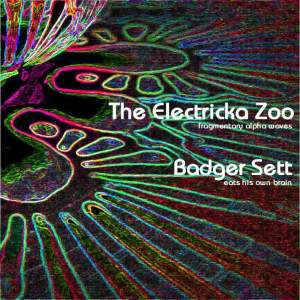 http://heavyspacerecords.blogspot.co.nz/2016/03/23-electricka-zoombadger-sett-split-7.html?m=1