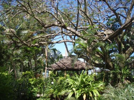 The Beachhouse, Coral Coast