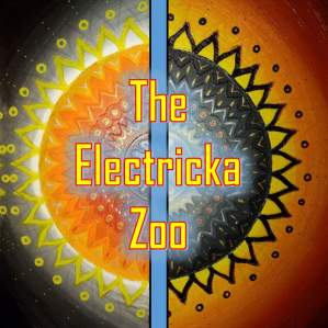 The Electricka Zoo, 2017